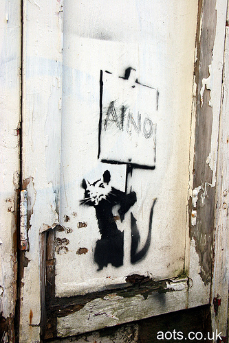 Banksy Brighton placard rat