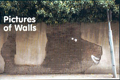 Pictures of Walls graffiti book