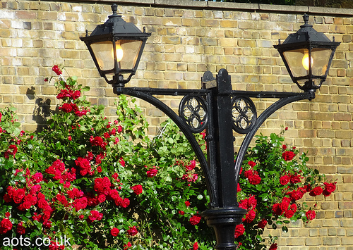 Staines West Station Lamps