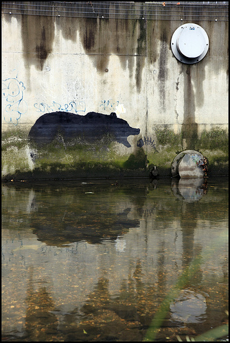 Banksy bear with Fish, Deptford Creek