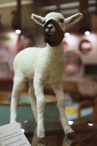 Banksy Lamb in a mask