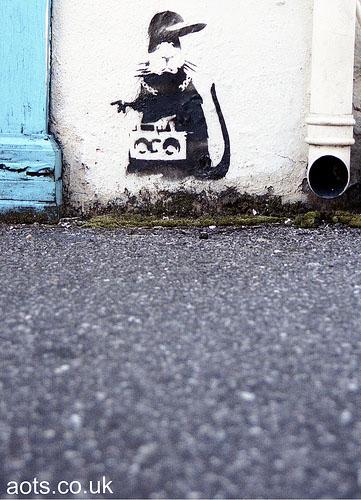 Rat stencil photo