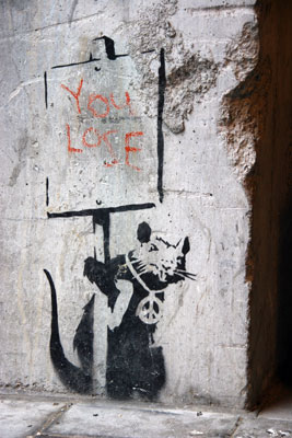 Banksy rat you lose
