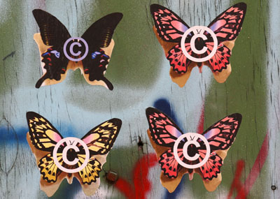 Copyright Butterflies