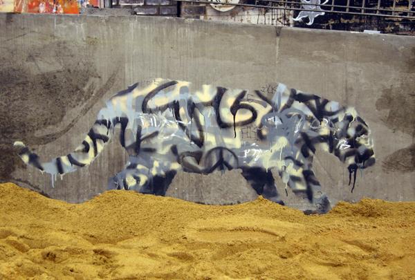Banksy tagger leopard