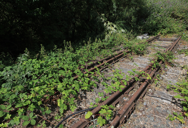 Staines West Branch line